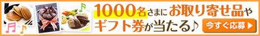 500x70.jpg