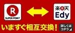 RE05_300x136.jpg