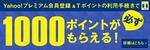 YP0311_tpoint.jpg