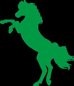 error_horse.png